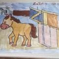 Koń Zuzia W Gr III